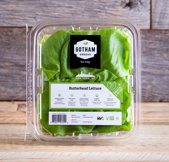 Butterhead Lettuce NY 02